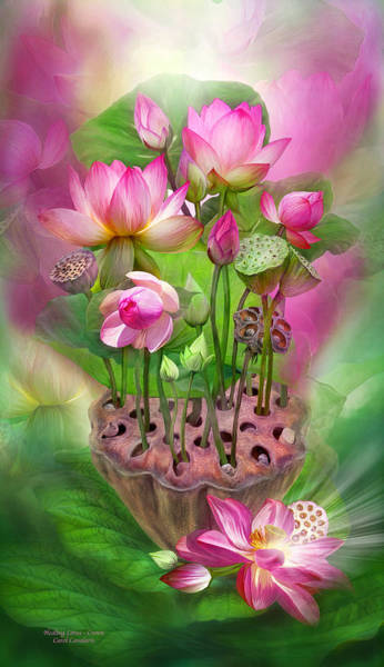 Mixed Media - Healing Lotus - Crown by Carol Cavalaris