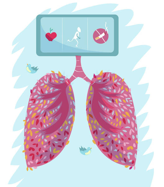 Hearties Photograph - Healthy Lungs by Fanatic Studio / Science Photo Library