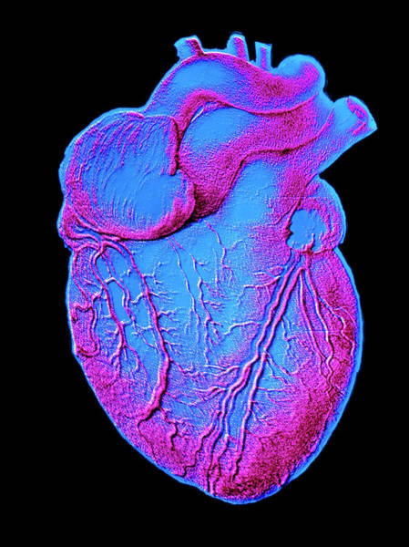 Heart Artwork Art Print by Alain Pol, Ism/science Photo Library