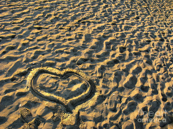 Photograph - Heart For Valentine's Day by Daliana Pacuraru