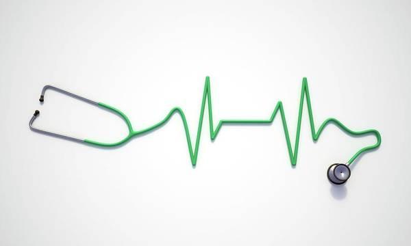 Wall Art - Photograph - Heart Health by Andrzej Wojcicki/science Photo Library