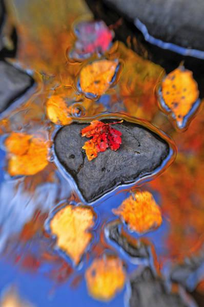 Joseph Photograph - Heart Rock Reflections by Joseph Rossbach