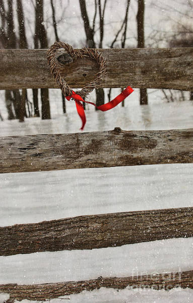 Photograph - Heart-shape Wreath With Red Ribbon On Fence by Sandra Cunningham