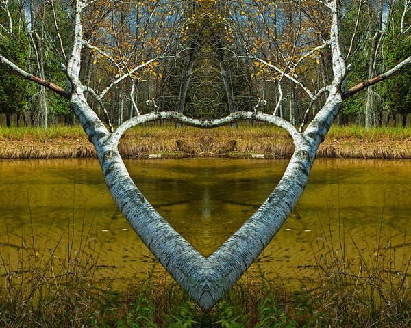 Manistee River Wall Art - Photograph - Heart Shaped Branches by Randall Nyhof