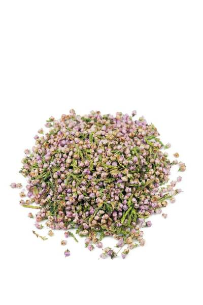 Wall Art - Photograph - Heather Flowers by Geoff Kidd/science Photo Library