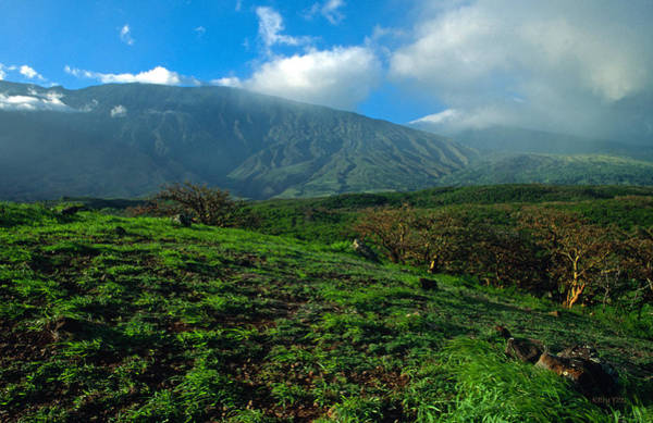 Haleakala Crater Photograph - Heaven On Earth by Kathy Yates