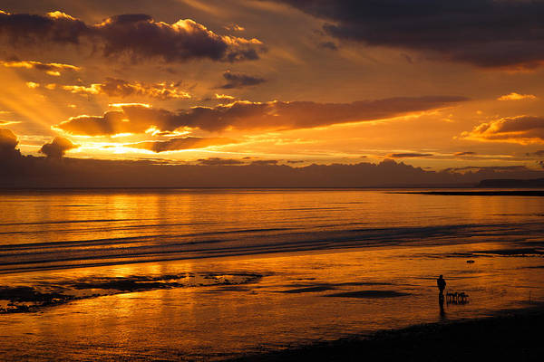 Dog Walker Photograph - Heaven On The Beach by Izzy Standbridge