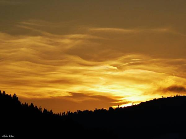 Photograph - Heavenly Gold Sunset by Barbara St Jean