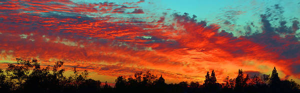 Photograph - Heavenly Skies by Lynn Bauer