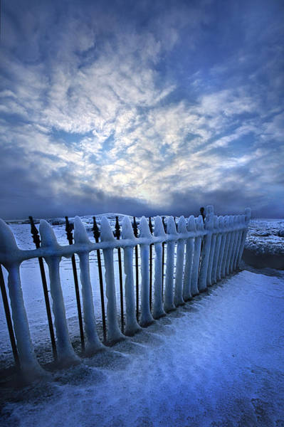 Iron Fence Wall Art - Photograph - Heaven's Gate by Phil Koch