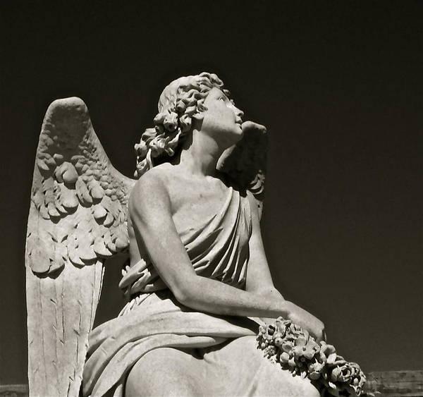 Photograph - Heaven's Gaze by Kim Pippinger