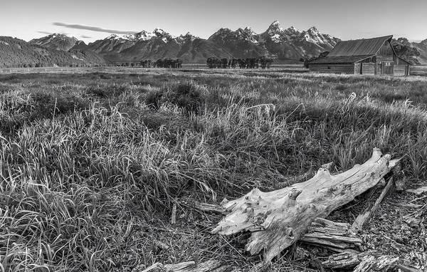 Photograph - Heavy Lumbar by Jon Glaser
