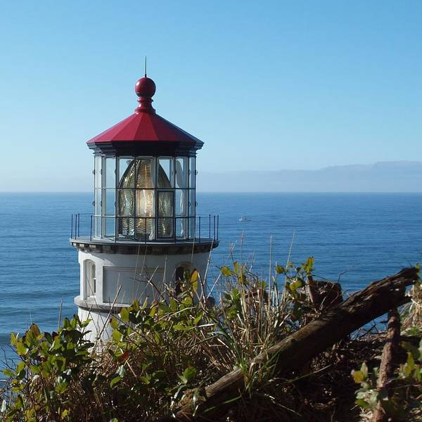 Photograph - Heceta Head Light  by HW Kateley