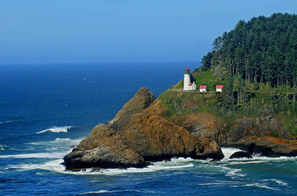 Photograph - Heceta Head Lighthouse by Lara Ellis