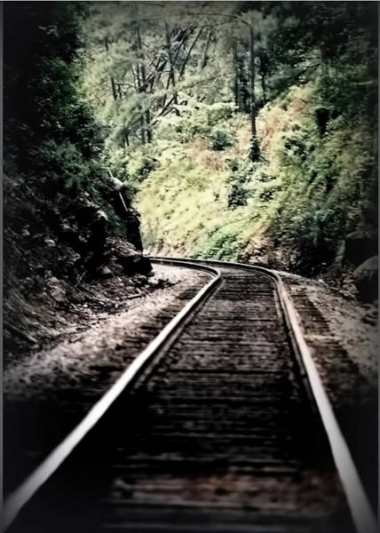 Hegia Burrow Railroad Tracks  Art Print