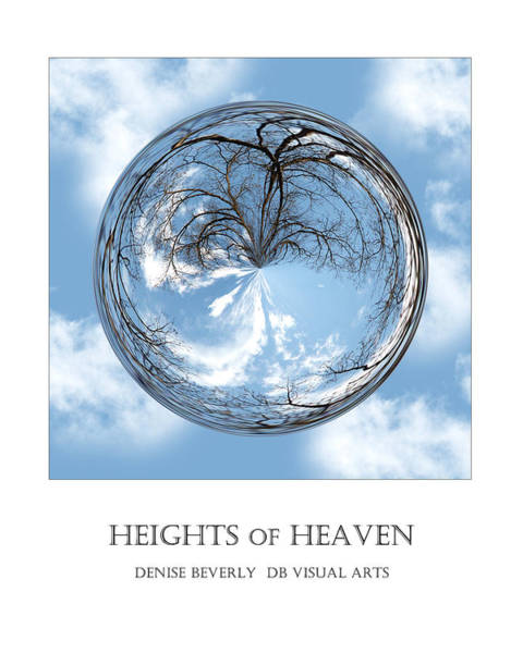 Photograph - Heights Of Heaven - Tree In A Bubble by Denise Beverly