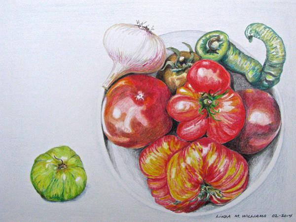 Organic Garden Drawing - Heirloom Tomatoes by Linda Williams