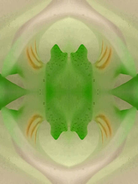 Essence Digital Art - Held Within The Zeropoint. by Marie-Louise Svensson