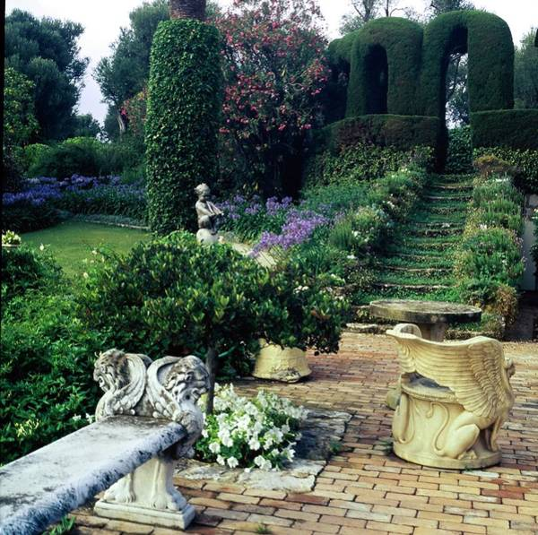 Topiary Photograph - Helene Rochas' Garden by Horst P. Horst