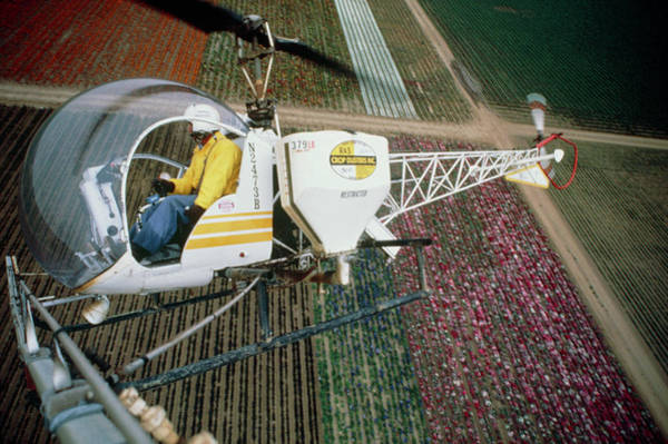 Biological Pest Control Photograph - Helicopter Spraying Flowers by Peter Menzel/science Photo Library