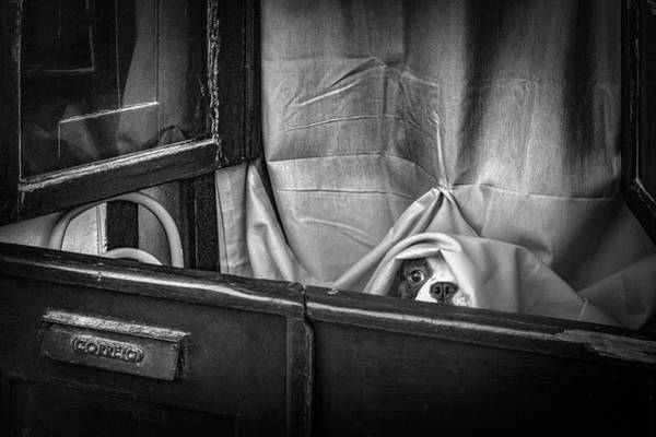 Curtains Photograph - Hello!! by Fernando Jorge Gon?alves