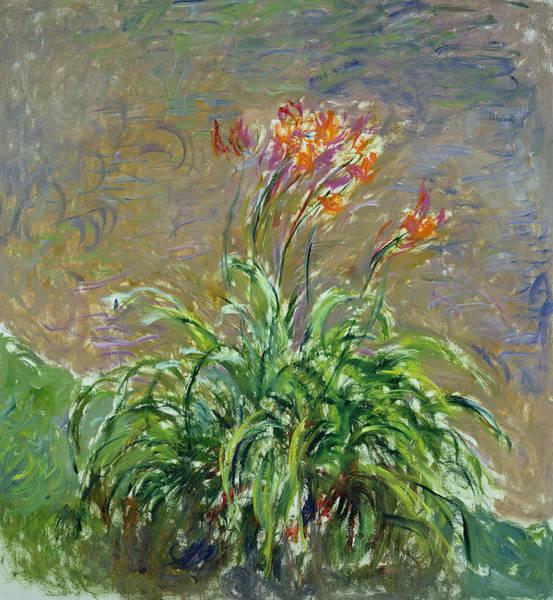 Wall Art - Painting - Hemerocallis, 1914-17 by Claude Monet