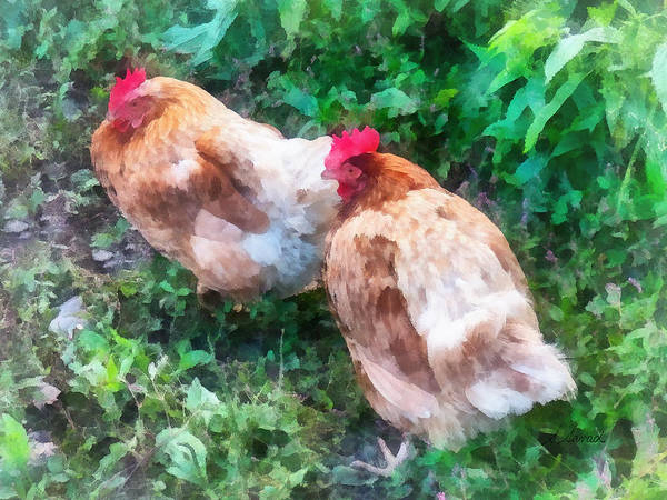Photograph - Hen Party by Susan Savad