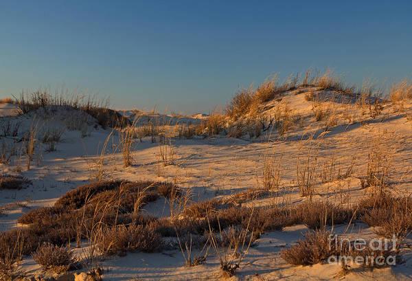 Lewes Photograph - Henlopen Dunes by Robert Pilkington