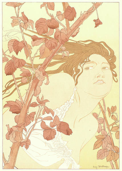 1854 Drawing - Henri Detouche French, 1854 - 1913. In The Brambles Dans by Litz Collection