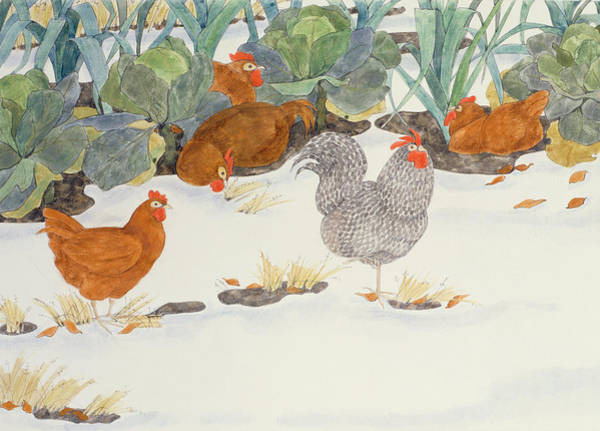 Chickens Wall Art - Photograph - Hens In The Vegetable Patch by Linda Benton