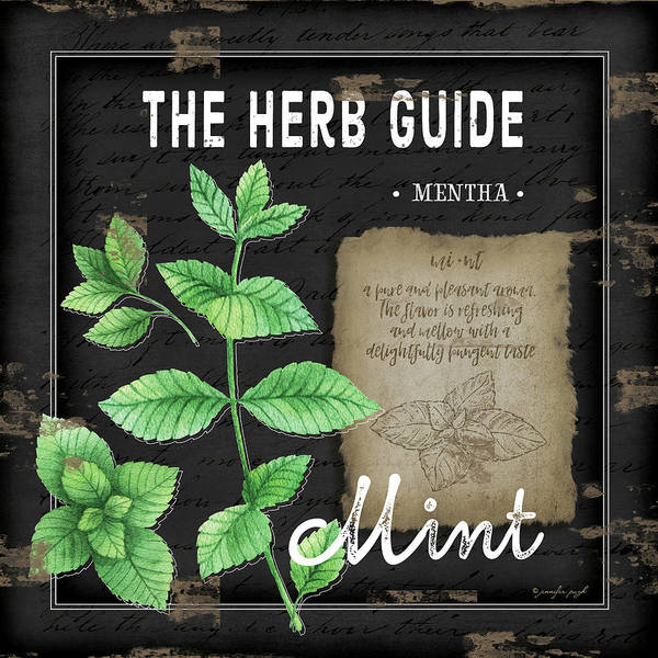 Wall Art - Painting - Herb Guide Mint by Jennifer Pugh