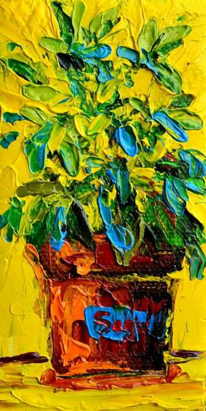 Painting - Herbal Plant Sage Tea by Patricia Awapara