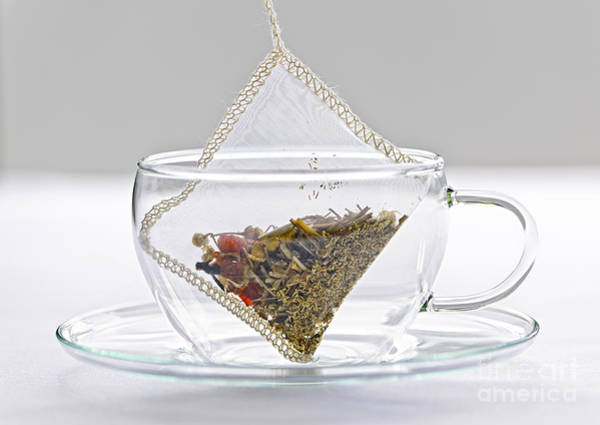 Wall Art - Photograph - Herbal Tea Bag In Cup by Elena Elisseeva