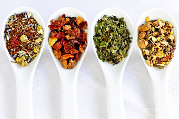 Wall Art - Photograph - Herbal Teas by Elena Elisseeva