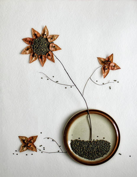 Grow Wall Art - Photograph - Herbarium... by Dimitar Lazarov -