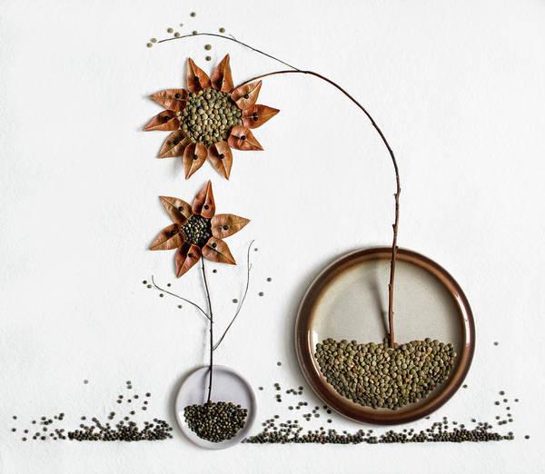 Autumn Flowers Photograph - Herbarium...2 by Dimitar Lazarov -