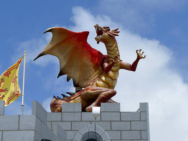 Photograph - Here Be Dragons by Richard Reeve