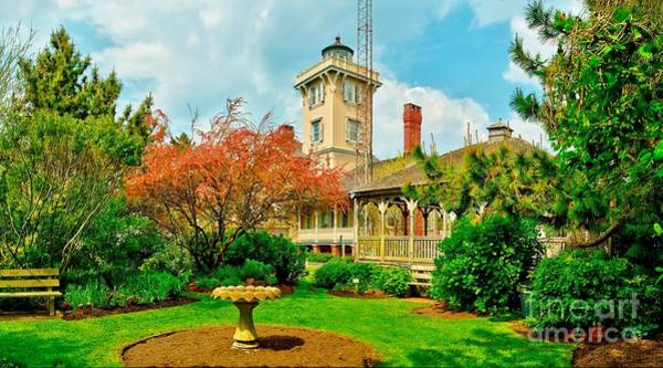 Photograph - Hereford Inlet Lighthouse Garden by Nick Zelinsky