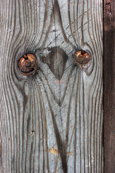 Knot Hole Photograph - Here's Looking At You 2 by Mary Bedy