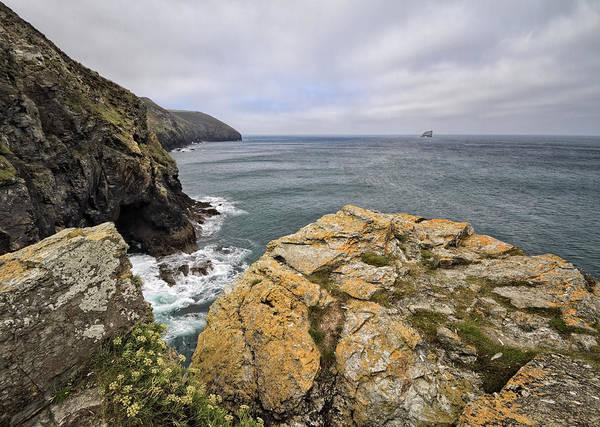 Shirleys Bay Photograph - Heritage Coastline by Shirley Mitchell