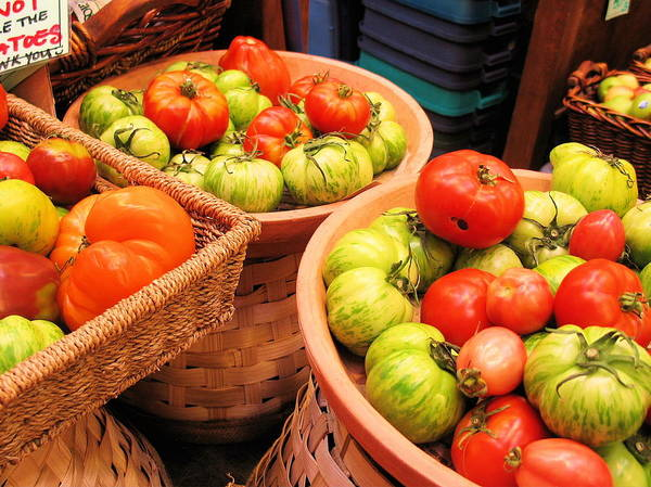 Photograph - Heritage Tomatoes by Gerry Bates