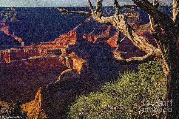 Photograph - Hermit Rest Grand Canyon National Park by Bob and Nadine Johnston