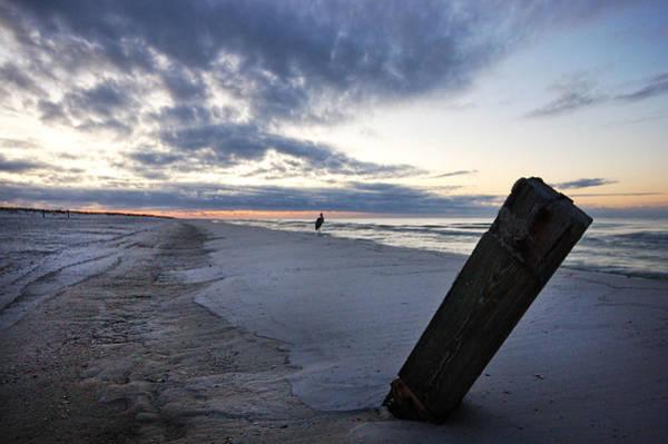 Wall Art - Digital Art - Heron And Post On Beach by Michael Thomas