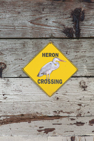 Glendale Wall Art - Photograph - Heron Crossing Sign At The Glendale by Peter Bennett