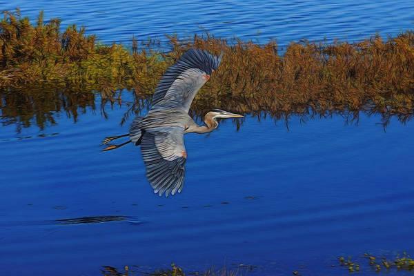 Egret Digital Art - Heron Flight Digital Art by Ernie Echols