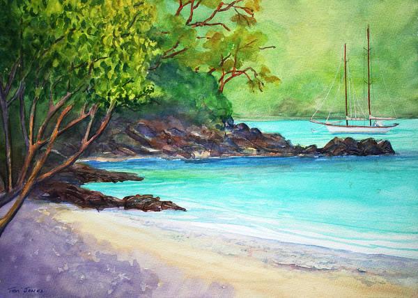 Us Virgin Islands Painting - Heron In Little Maho Bay by Teri  Jones