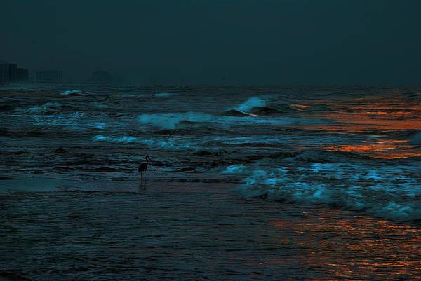Digital Art - Heron In The Moonlight by Michael Thomas