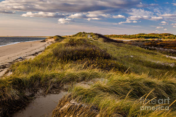 Photograph - Herring Cove by Susan Cole Kelly