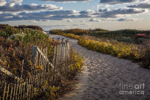 Photograph - Herring Cove Walk by Susan Cole Kelly