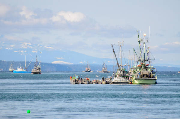 Photograph - Herring Fleets Qualicum Beach by Roxy Hurtubise